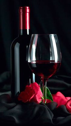 Samsung Galaxy S7 Red Rose and Wine Wallpaper