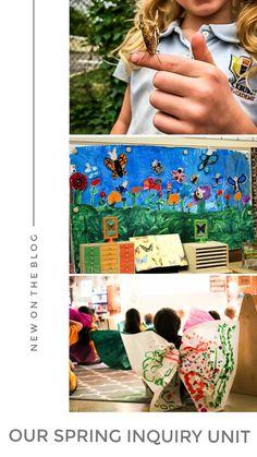 Our Spring Inquiry Unit Kindergarten Science Activities, Kindergarten Bulletin Boards, Preschool, Inquiry Based Learning, Growing Gardens, Spring Has Sprung, Blogging For Beginners, First Grade, Elementary Schools