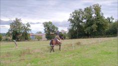 Nice Horseback Archery