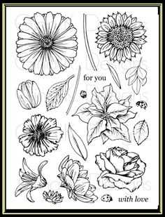 Hands, Head and Heart: My Stamp Sets