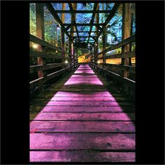 From the Enchanted Forest, Pitlochry UK #atmosphere #pink #pathways
