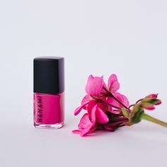 hanami nail polish cameo lover