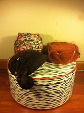 3 VINTAGE HATS & BOX - Linda Lane, Encore Famous Barr & Zebra Stripe Box Vintage Hat Boxes, Vintage Hats, Antiques, Ebay, Antiquities, Antique, Old Stuff