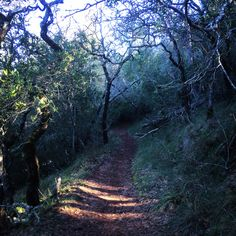 Rough-Go Trail in Annadel State Park