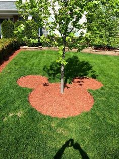Love this cute idea of adding a little bit of Mickey Mouse to your yard. I would choose a dark wood mulch though.