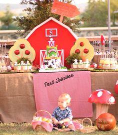 Farm themed party
