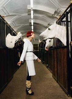 into the white saddle