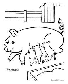 Farm piglets to color