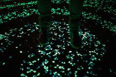 À Nuenen au Pays-Bas, le laboratoire de design Roosegaarde a dévoilé son projet « Van Gogh-Roosegaarde Bicycle Path », une piste cyclable saupoudrée de tâches luminescentes et tourbillonnantes inspirées du style pictural de Vincent van Gogh, ayant lui-même vécu dans cette ville à l'époque. Plus de détails ainsi qu'une vidéo dans la suite (on veut la même chose avec les écrits de Victor HUGO quand il est venu visiter la Cité des Sacres).