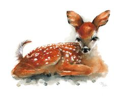 Deer Fawn  Archival print of watercolor painting. by MiraGuerquin