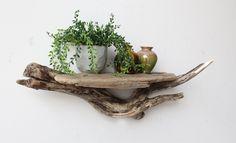 Driftwood Shelf.