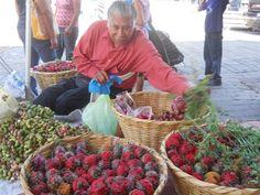 En los portales de Jocotepec, en donde es común ver a ancianos y mujeres vendiendo guamuchiles y pitayas en esta temporada