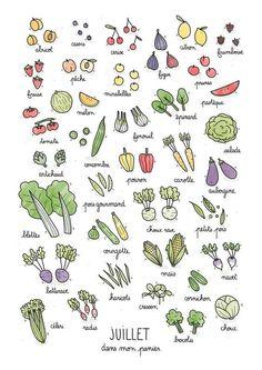 Fruits & Vegetables calendar on Behance Bullet Journal Art, Bullet Journal Inspiration, Bullet Journals, Fruit Doodle, Garden Journal, Sketch Notes, Food Drawing, Food Illustrations, Cute Food