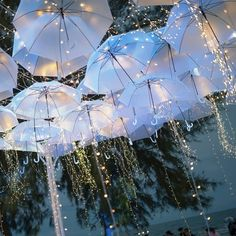 Surreal Ideas to Add White Umbrellas to your Wedding Decor - Regenschirm Beach Wedding Reception, Wedding Events, Wedding Day, Beach Weddings, Indian Weddings, Crazy Wedding, Wedding White, Wedding Receptions, Wedding Ceremony