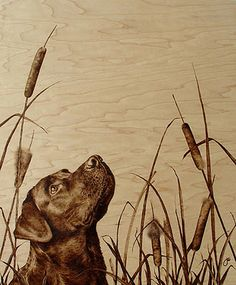 If It's Hip, It's Here: Burn Wood, Baby, Burn. The Incredible Pyrographic Art of Julie Bender.