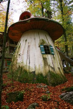 it's a mushroom! it's a tree house! It's a house under the trees!