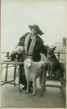 Woman with her four dogs, two poodles, borzoi and german shepherd, circa 1910.