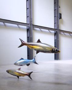 "Philippe Parreno's installation ""Anywhen"" in Tate Modern's Turbine Hall. Philippe Parreno, Turbine Hall, Modern Art, Contemporary Art, Genius Loci, Fish Tales, Exhibition Display, T Art, Installation Art"