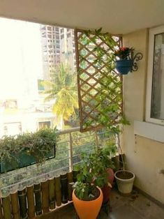 Bamboo fence for the creeper from my sunny balcony Small Balcony Garden, Small Balcony Decor, Balcony Design, Raised Garden Beds, Front Yard Fence, Farm Fence, Fence Gate, Pallet Fence, Fence Landscaping