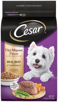 CESAR Dry Dog Food 1 * Click on the image for additional details.-It is an affiliate link to Amazon. #DogFoods