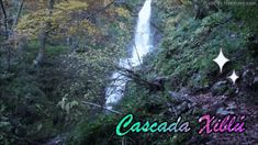 CALLEJERoS  RUTERoS: Cascada Xiblú Plants, Hiking Trails, Natural Playgrounds, Waterfalls, Plant, Planets
