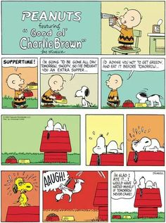 Snoopy. .to eat or not to eat? !