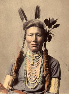 History: Old Coyote, also known as Yellow Dog, of the Crow, or Apsáalooke. This photo was taken in about 1879