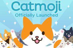 Catmoji Cat Content Social Network