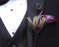 purple calla, feather and fiddlehead boutonniere