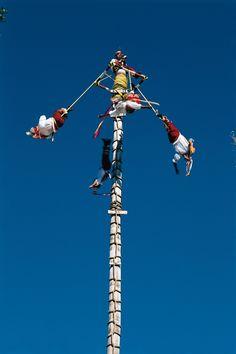 Los voladores de #Papantla en una asombrosa demostración de destreza, valor y tradición.