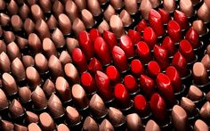 Choosing the Right Set of Makeup Brushes