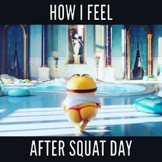 #squat more!! #humpday #shutupandsquat #bootygainz #bootybuilding #bodybuilding #physique #aesthetics #gains #legday #minions #gymmemes #fitnesshumor #fitandfunny #fitnessmodel #fitnessfreaks #fitnessaddict #lol #gymrat #gymflow #glutes #memes #workit #workoutwednesday #neverskiplegday #fitspiration #fitspo #curves