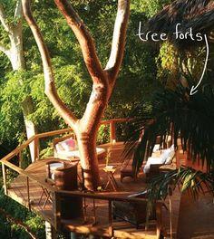 Discover Haramara Retreat | Evolver.net