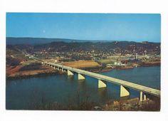 (#650) View of the New Olgiati Bridge Chattanooga Tennessee 1960s Postcard