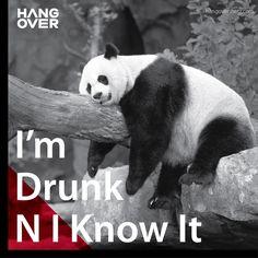 I'm Drunk N I know it... #hangovershotz For more information visit- http://hangovershotz.com/
