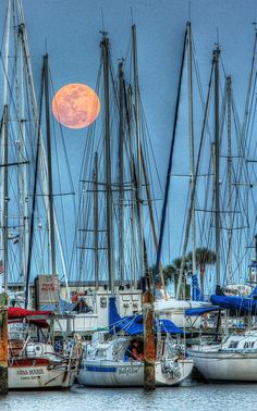 The 2012 supermoon rising over the marina in St. Petersburg, FL.