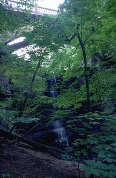Matthiessen State Park.  Who knew there is such beautiful scenery in Illinois?