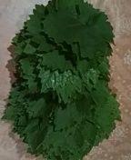 Σε βάζο γυάλινο.100 φυλλα σε ρολο 1 κουτ. σουπας ξινο(λεμόντοζου) και καυτο νερο να τα σκεπασει.Αναποδα μεχρι να κρυωσει. Parsley, Herbs, Food, Essen, Herb, Meals, Yemek, Eten, Medicinal Plants