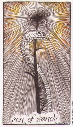 Knight of Wands - The Wild Unknown Tarot by Kim Krans
