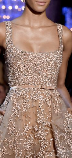 Elie Saab Haute Couture | F/W 2014-15