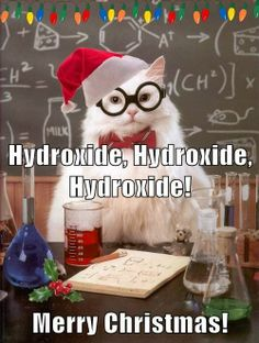 It's a Chemistry Cat Christmas