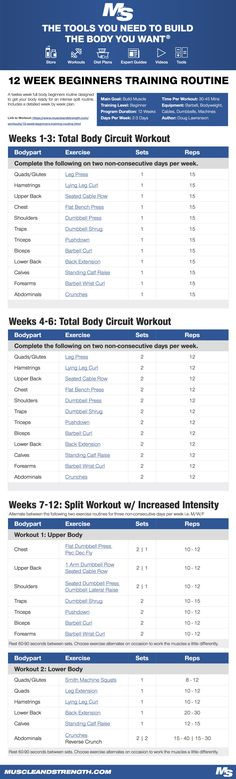 (Click through to download PDF!) A twelve week full body beginners routine designed to get your body ready for an intense split routine. Includes a detailed week by week plan.
