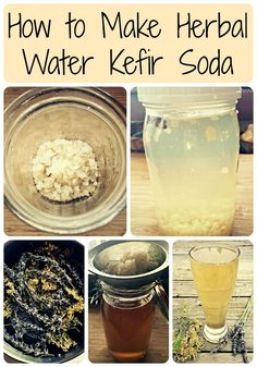 Learn all about water kefir, a probiotic drink, and how to turn it into an all natural herbal soda! You won't believe how easy it is to make your own all natural, fermented kefir water. #kefir #ferment #fermented #herbs #