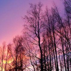"""Auringonlasku ©amayatar: """"Keväinen auringonlasku etupihalta nähtynä."""" #pientalojapiha"""
