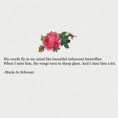 """568 gilla-markeringar, 10 kommentarer - Marie Jo Schwarz (@mariejowriting) på Instagram: """"Sharp winged butterflies © Posted 4/18/17 Tag 