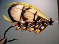 A Spey and a Salmon fly
