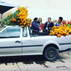 #guanajuato #marigolds #mexico #diademuertos #dayofthedead
