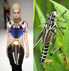 †Gritos Silenciosos†: Fashion Clicks: Inspired by Creepy Crawlers Colorful Fashion, Unique Fashion, Fashion Art, Fashion Beauty, Fashion Week, Fashion Show, Fashion Trends, Moda Animal, Paris Couture