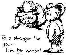 mr. wombat from blinky bill