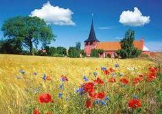 Afbeeldingsresultaat voor denemarken landschap. Het land bestaat bijna volledig uit laagland.